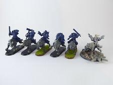 6 x Thunderwolf Cavalry der Space Wolves - teilweise bemalt Umbau -