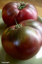 Cherokee Purple Heirloom Tomato Seeds- 75+ 2015 Seeds   $1.69 Max Shipping/order