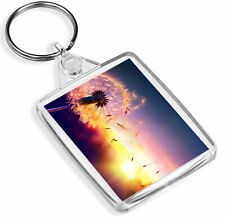 1 x Beautiful Dandelion Sunset Colour - Keyring - IP02 - Mum Dad Kids Gift#3773
