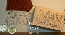 P63 Pit-bull dog puppies rubber stamp