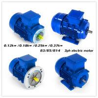 Three Phase Electric Motor 230/400V 0.37kW 1/6~1/2 HP 3000rpm B3