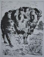 Pablo Picasso (d'après) - Les Animaux - 4 gravures signées #1200ex
