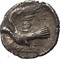 SIKYON 350BC Apollo Dove Obol Genuine Authentic Ancient Silver Greek Coin i57631