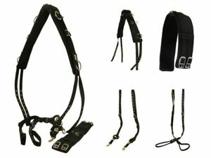 White Horse Equestrian Yard Field Lunging Training Roller Lunge Line Pessoa Set