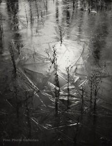 1950s Vintage PAUL CAPONIGRO Winter Lake Ice Formation Landscape Photo Engraving