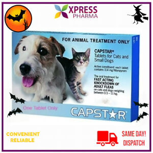 Capstar Flea Treatment Small Dogs and Cats 0.5 to 11kg NEW STOCK XPRESS