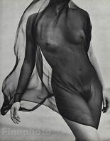 1984 Vintage 16x20 Surreal FEMALE NUDE Torso Veil Photo Gravure Plate HERB RITTS