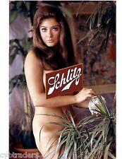 Schlitz Sexy Cynthia Meyers Beer Ball  Refrigerator / Tool Box Magnet  Man Cave