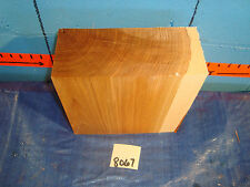 """#8067  hickory turning blanks L9"""" W 8 3/4"""" T3 7/8"""""""