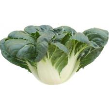 2000pcs Canton PAK CHOI Bok Choy Chinese Cabbage Green Vegetable Seeds Original