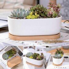 Creative Oblong Ceramic Tray Pot Succulent Plant Flower Oval Home Table Decor