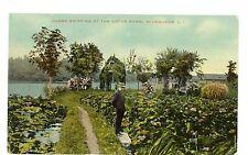 Riverhead LI NY - JUDGE GRIFFING AT THE LOTUS POND - Postcard