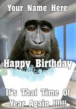 Ape Monkey bd76 Bath Time Fun Cute Birthday Card A5 Personalised Greetings