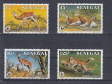 D. Senegal  875 - 78  Gazellen  WWF   **  (mnh)