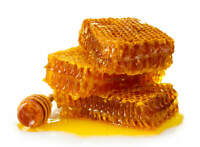 Honey 100% Pure Raw Natural Unfiltered Unheated 5 lbs Made in USA Free Shipping