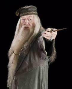 Albus Dumbledore Cosplay Wig Mustache Beard Halloween Cosplay Prop