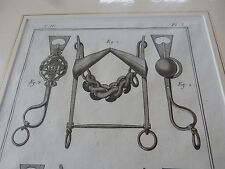 HORSE EQUESTRIAN BITS BRIDLE   amazing mounted 1700s engravings GIFT POTENTIAL k