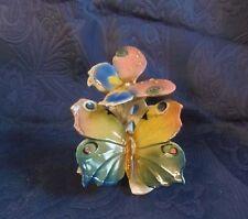Papillons-papillon groupe Ens Thuringe