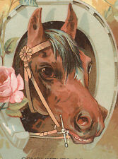 A EASTERBROOK & CO, TRADE CARD, selling GROCERIES & MEAT, BEAUTIFUL HORSE TC2279