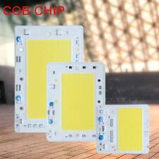 High Power 5W 50W 100W 150W LED Bulb Light COB SMD Chip DIY Spotlight AC220V