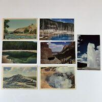 7 Vintage Yellowstone National Park Postcards Lot (Haynes / Sanborn)