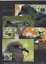 Faroe 2005 - Maxicard - Vogels/Birds/Vögel  WWF
