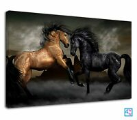 Black And Brown Prancing Horses Equestrian Canvas Print Wall Art Picture