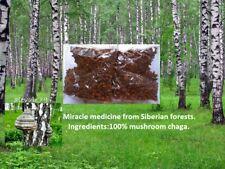 100% Natural Siberian Chaga Mushroom Tea Altai Powerful tool strengthen immunity