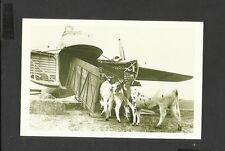 Nostalgia Postcard Bristol Freight Plane Loading Cattle on an Aeroplane