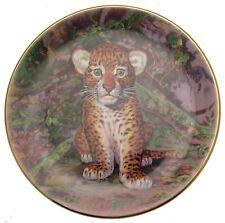 Royal Stafford Jungle Prince Sebastia Boada Leopard Plate Big Cat Plates CP1034
