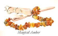 Genuine Baltic Amber Tick E Flea Collare Per Animali Domestici Taglia L