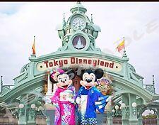 Japan - TOKYO DISNEYLAND - Travel Souvenir Flexible Fridge Magnet