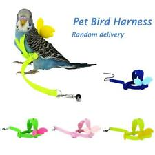 Parrot Traction Strap Outdoor Pet Bird Harness Lead Leash Flying Training Rope