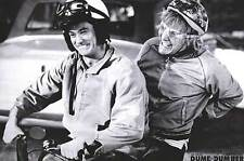 Dumb and Dumber brand new poster jim carey Jeff Daniels NEVER HUNG! 24x36