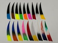 "Archery Past 4"" Shield Multi-Colored Feathers - 12 Pack, RW or LW"