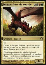 ▼▲▼ Broodmate Dragon (Dragon frère de couvée) SHARDS #160 ENGLISH Magic