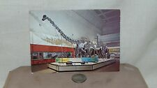 VINTAGE POST CARD THE HALL OF DINOSAURS MUSEUM OF  NATURAL HISTORY UNUSED