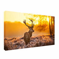 Large Deer in Forest Stags Wild Animals Canvas Pictures WallArt Print 20x40inch