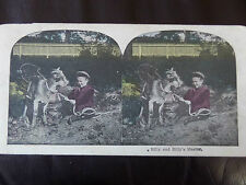 "c.1895 LOVERY COLOUR 3dSTEREOGRAPH/ STEREOGRAM PHOTO ""Billy and Billy`s Master"""