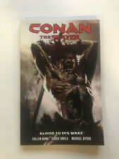Conan the Slayer: Blood in his Wake TPB Dark Horse (New,rare)