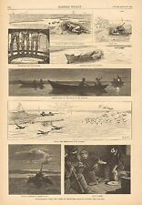 Duck Shooting Near The Capes Of Delaware, by A.B. Frost, 1888 Antique Art Print