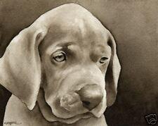 Weimaraner Puppy Art Print Sepia Watercolor Painting by Artist DJR