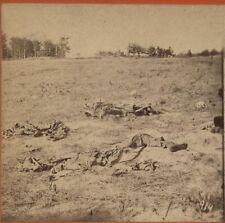 ANTIQUE PHOTO CIVIL WAR BATTLEFIELD CARNAGE. STEREOVIEW.
