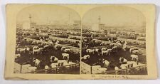 Chicago Cattle Stock Yards Number 3 Illinois Stereoview Circa 1800's #158