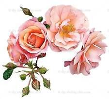 Furniture Decal Vintage Image Transfer Real Rose Shabby Chic Antique Flower DIY