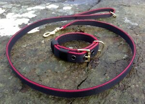 ST20 Strong Webbing Dog Collar & Lead Set Terrier/Bull Terrier/Spaniel/Labrador