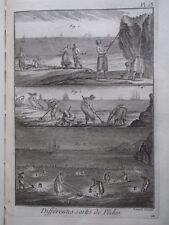 1c-23 Gravure 1793 Diderot D'Alembert Panckoucke différentes sortes de pêche
