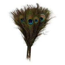 Pack of 50pc Natural Peacock Feathers 10-12'' F2B3