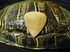 """SLY RED'S"" ORIGINAL BLUEGRASS  TORTOISE SHELL GUITAR PICK! 100% LEGAL!!!"