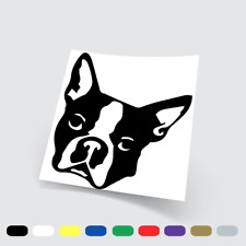 Adesivi in vinile Stickers Prespaziati French Bulldog 10 Auto Notebook Parete Pc
